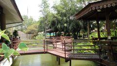 Tao Garden каналы и ресторан