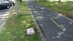 Cairns, Australia, esplanade, беговая дорожка