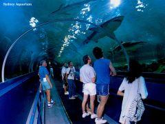 Сиднейский аквариум