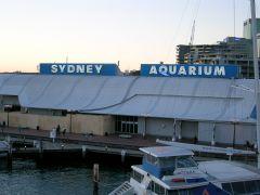Sydney_Aquarium.jpg