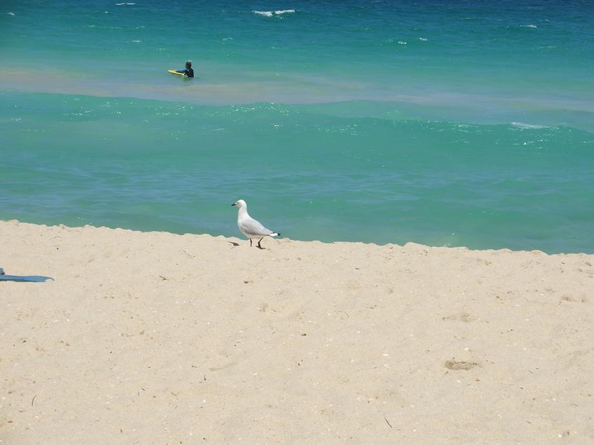 Perth, Australia, Sea beach 4