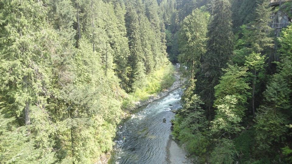 Vancouver, British Columbia, Canada, город Suspention Bridge 4.jpg
