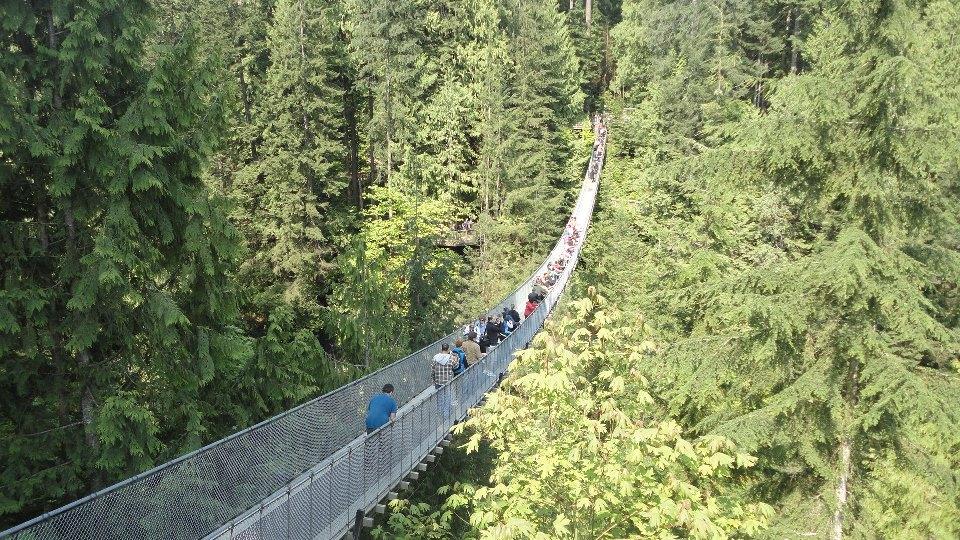Vancouver, British Columbia, Canada, город Suspention Bridge.jpg