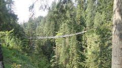 Vancouver, British Columbia, Canada, город Suspention Bridge 2.jpg