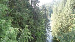 Vancouver, British Columbia, Canada, город Suspention Bridge 5.jpg