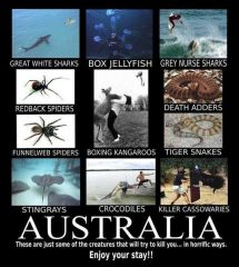 Австралия   опасности