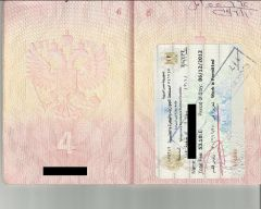 visa Egypt sample