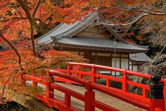 История и культура Японии 2