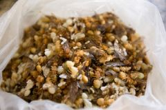 Жареные муравьи