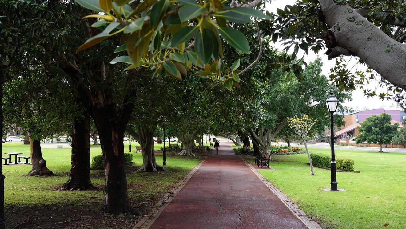 Wollongong 13