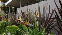Wollongong 14