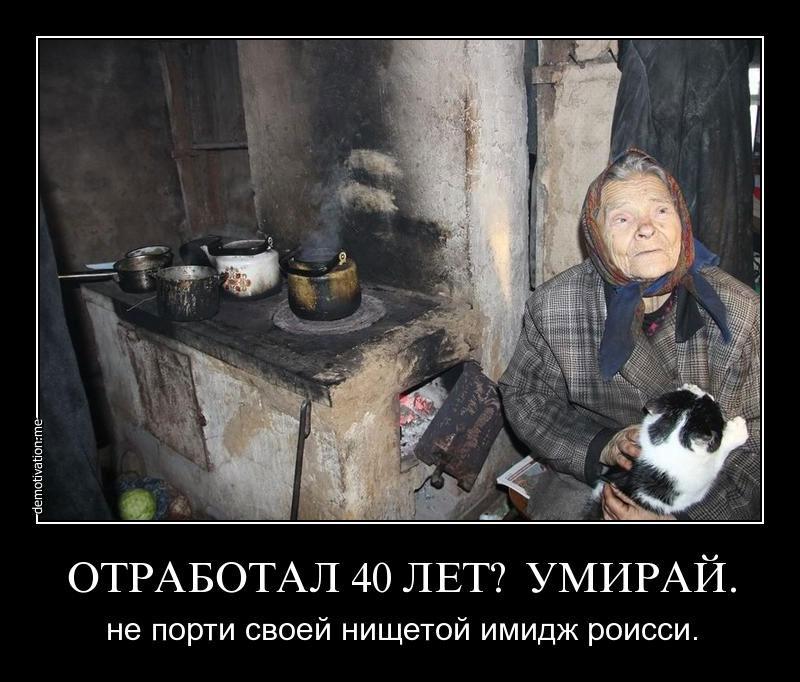 gallery_11_280_21677.jpg