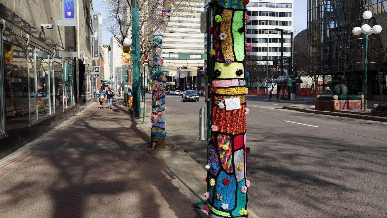 Edmonton одетые деревья
