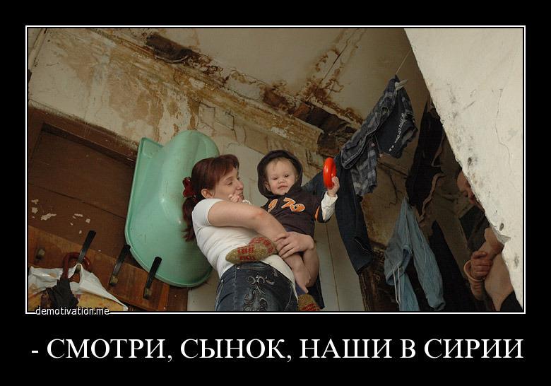 gallery_11_316_58794.jpg