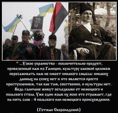 Декаданс Украины, т. 7