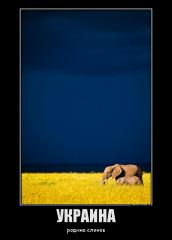 Украина  родина слонов.png