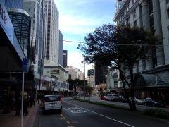 Wellington 2013 5