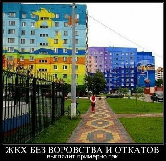 gallery_11_323_15249.jpg
