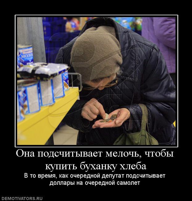 gallery_11_323_17136.jpg