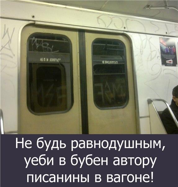 gallery_11_323_36065.jpg