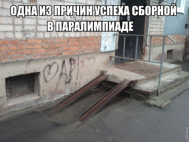 gallery_11_323_42410.jpg