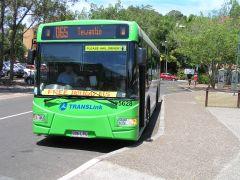 zero-fare bus Noosa Heads.jpg