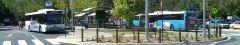Noosa Bus Station
