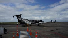 Окленд, Новая Зеландия 2014 25