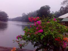 Тай, река Квай