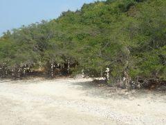 Дикий пляж острова Ко Лан