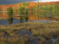 Росперсонал отзывы   Kitchener Waterloo, Ontario, Canada   Algonquin Park