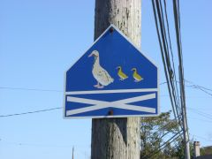 Росперсонал отзывы   Canada, Nova Scotia, Yarmouth Duck Crossing