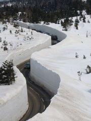 Это японские горы (3000 м над уровнем моря), зима здесь длится с ноября по апрель и толщина снега достигает 20 метров. От туристов нет отбоя 2