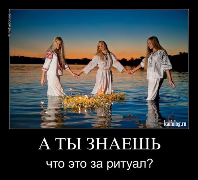 gallery_1412_501_13211.jpg