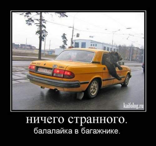 gallery_1412_501_16953.jpg