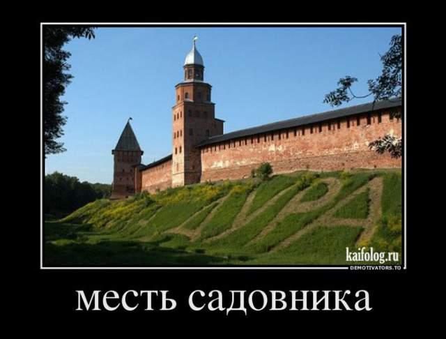 gallery_1412_501_23799.jpg
