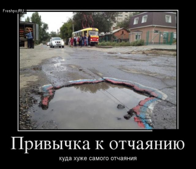 gallery_1412_501_34996.jpg