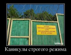 А тем временем в далёкой России 6