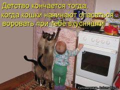 Детство кончается тогда, когда кошки начинают опасаться воровать при тебе вкусняшки