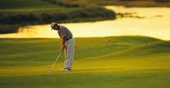 golf style 1239396661 Ib w687h357