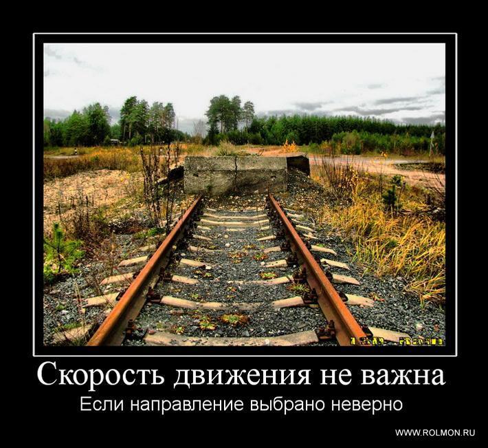 gallery_1423_548_669.jpg