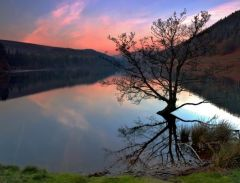 Lake Ladybower