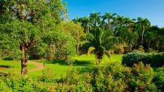 George Brows Darwin Botanic Garden.jpg