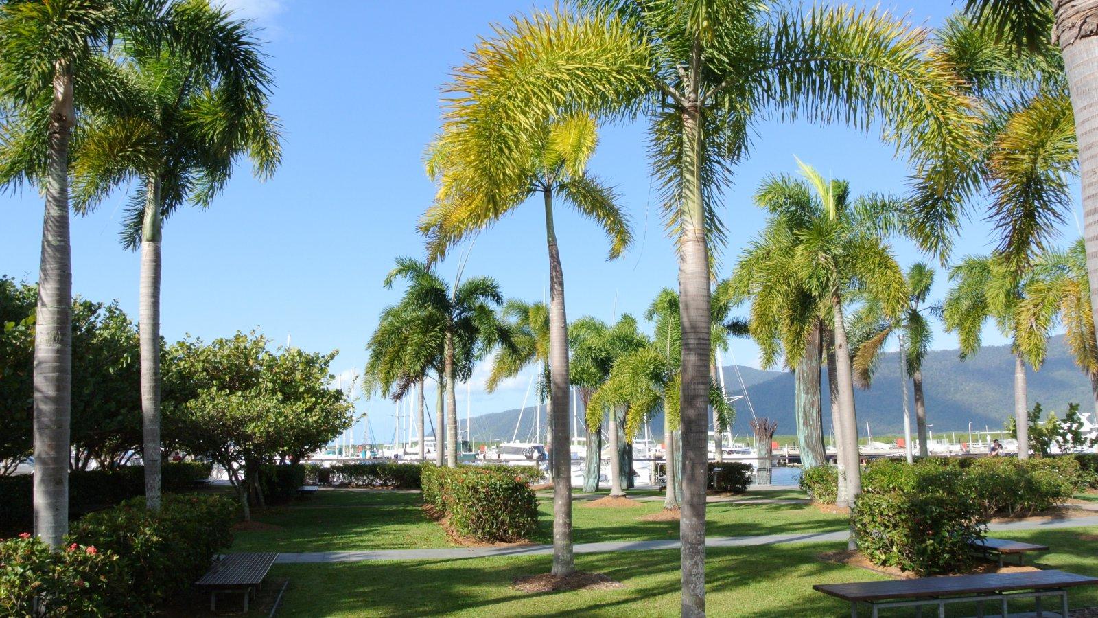 Росперсонал отзывы - Cairns, QLD, Австралия, выбор района для проживания.
