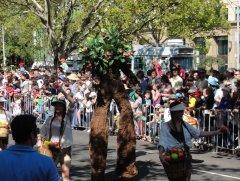 """""""Живое"""" дерево - группа защиты окружающей среды."""