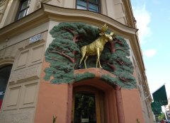 Лось - символ Швеции