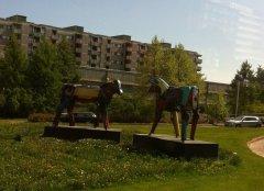 """Скульптурная группа """"лошади"""" в Хельсинки"""