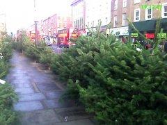 елки на улицах Лондона