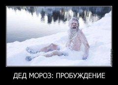 Россия. Приколы Новой года 2018. Дед Мороз проснулся..jpg