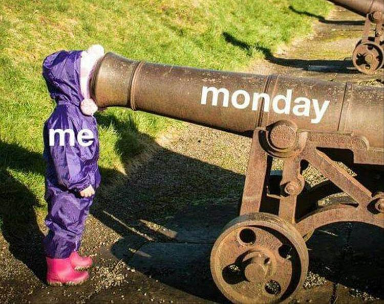 a-monday-funny-picture.jpg
